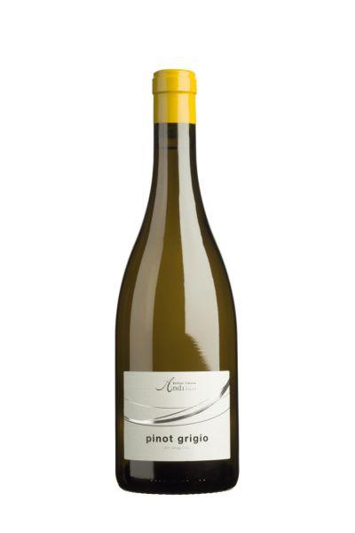Kellerei Andrian Pinot Grigio Alto Adige DOC 2020