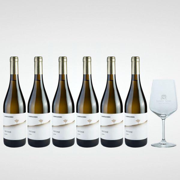 Sparpaket Librandi Critone Val di Neto IGT 2020 (6 x 0,75l) mit Spiegelau Senti Vini Weinglas