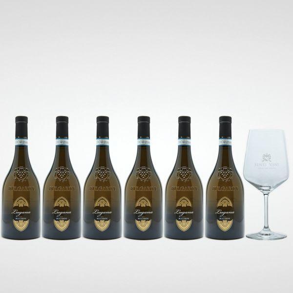 Sparpaket Bulgarini Lugana DOC 2019 (6 x 0,75l) mit Spiegelau Senti Vini Weinglas